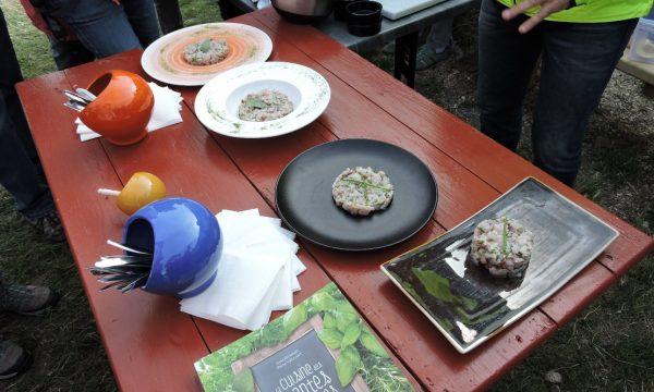 Port des salines – oléron – du marais à l'assiette 5