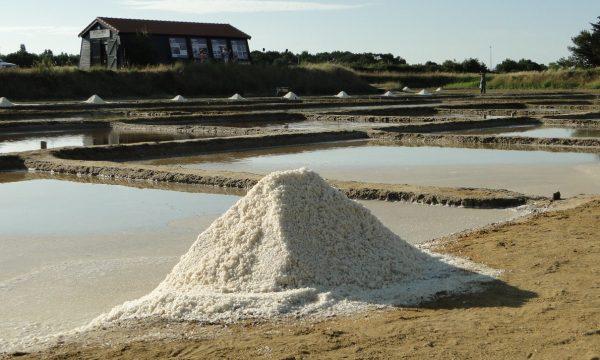 Port des Salines – Oléron – mulon de sel
